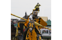 Yellow Jouster